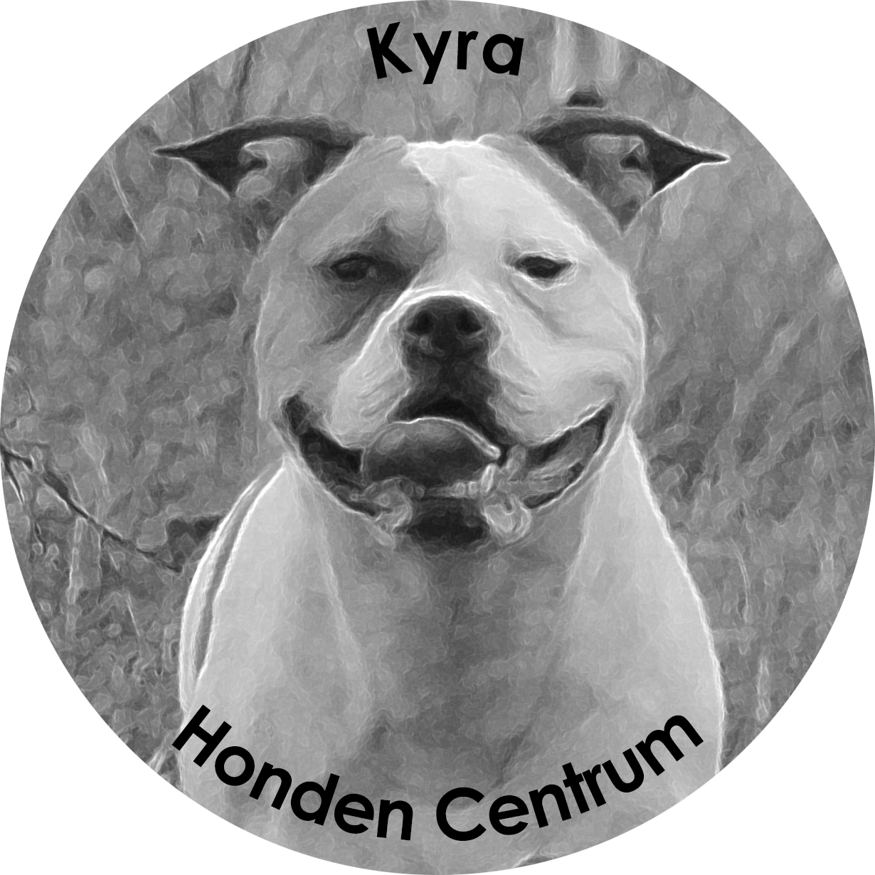 Kyra Honden Centrum
